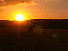 Západ slunce u jezera Manyara