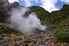 Dominica-Valley of Desolation